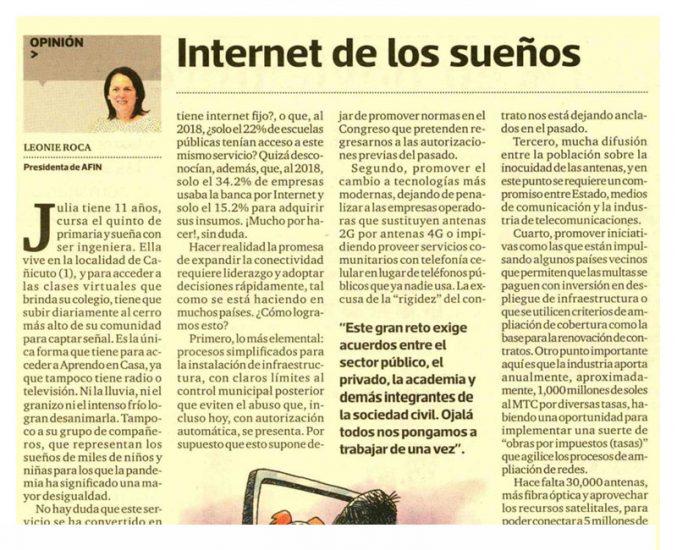 """""""Internet de los sueños"""" por Leonie Roca, presidenta de AFIN"""